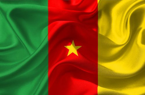 Article : Arbitrage : Le Cameroun contre le reste du monde…